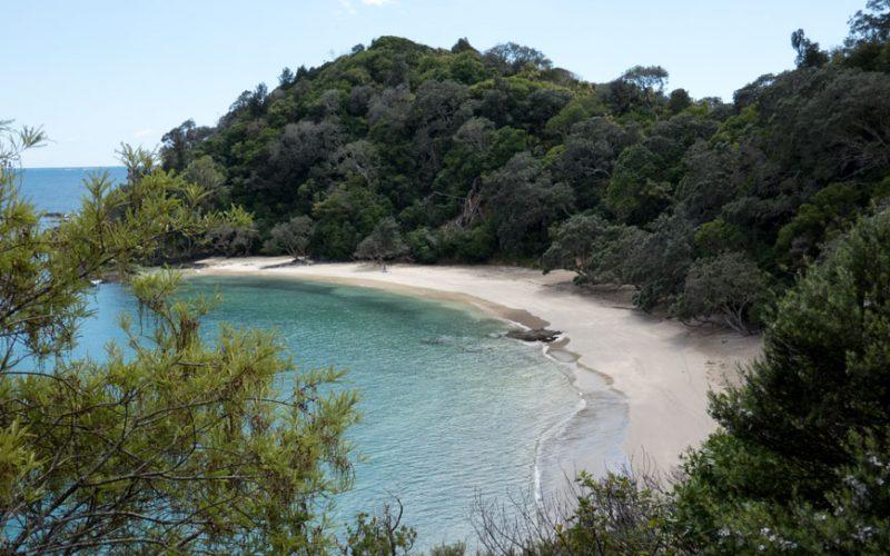 Whale Bay, Nordinsel Neuseeland