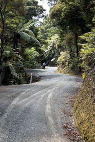 Kaikanui Road nach Helena an der Tutukaka Küste, Nordinsel Neuseeland