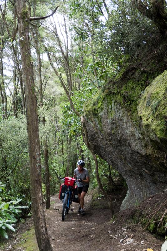 Schieben auf dem Waikato River Trail, Neuseeland Nordinsel