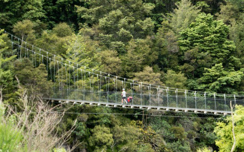 Annnette auf einer der Hängebrücken am Waikato River Trail, Neuseeland Nordinsel
