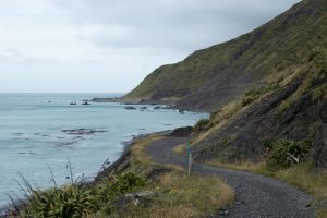 Rimutaka Cycle Trail, 30 Kilometer vor Wellington, Neuseeland Nordinsel