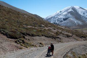 Kurz vor dem 1347 Meter hohen Island Saddle auf der höchsten Pass-Straße Neuseelands. Im Hintergrund der Neuschnee auf den Bergen, Neuseeland Südinsel.