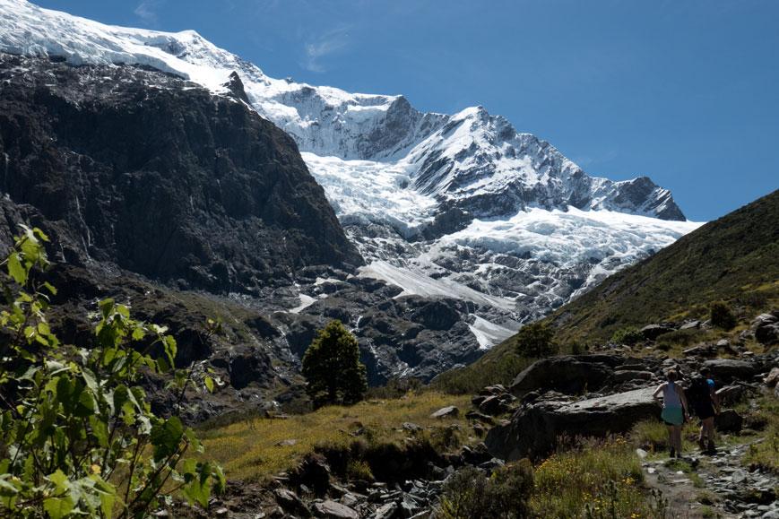 Rob Roy Glacier, Neuseeland Südinsel