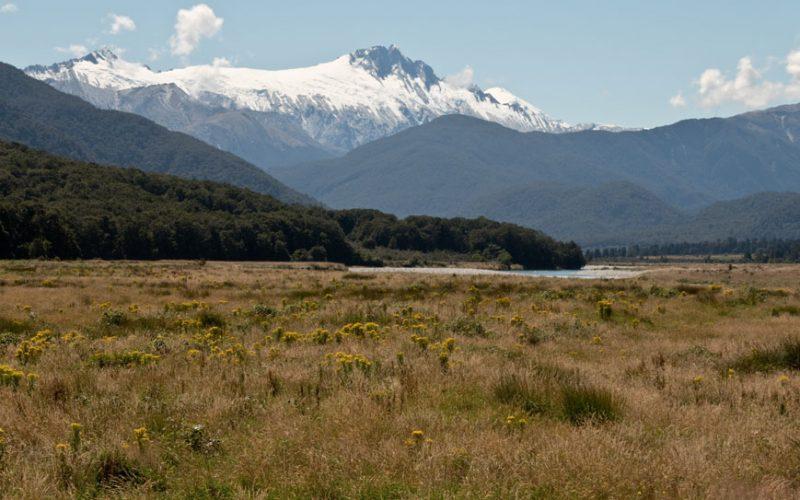 Beim Haastpass, Neuseeland Südinsel