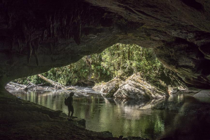 Höhle im Fenian-Regenwald, Neuseeland Südinsel