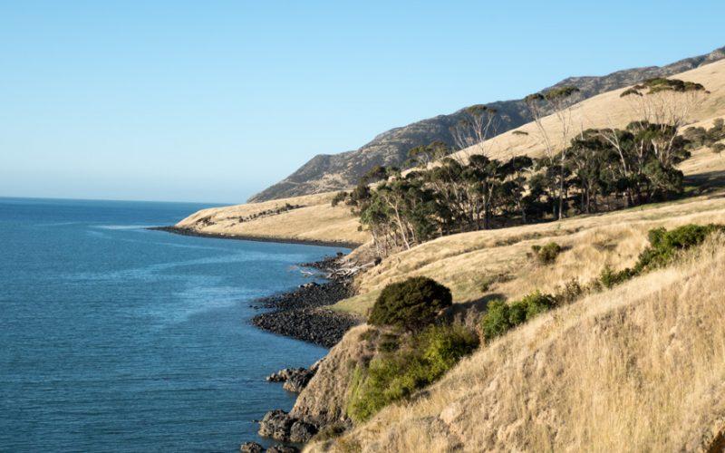 Banks Peninsula, Neuseeland Südinsel