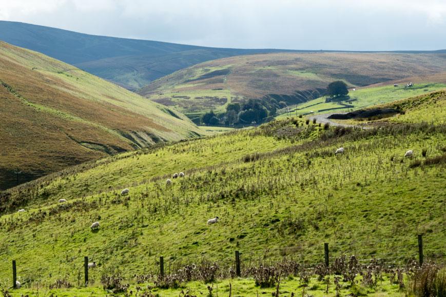 Moorfoot Hills südlich von Edinburgh