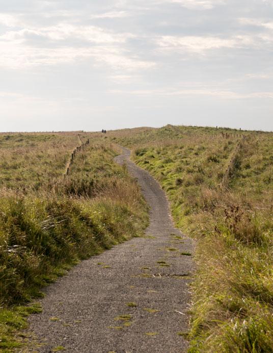 Radweg 1 südlich von Berwick