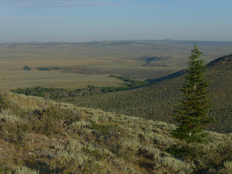 Blick auf das Great Divide Basin